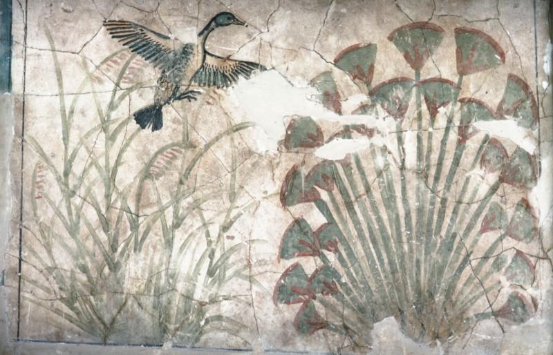 Aus dem Dickicht auffliegende Ente, vgl. 32 532