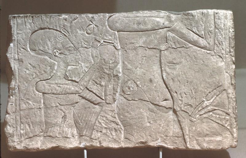 Echnaton und seine Gemahlin bei der Opferung, Relieffragment, Kalkstein, H. 23 cm
